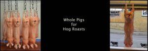 hog roast whole pigs